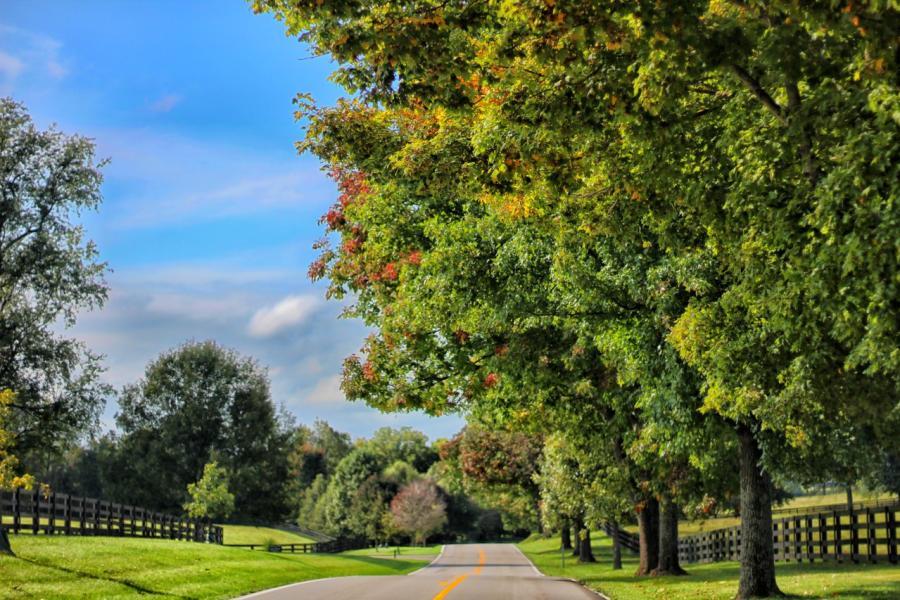 Frankfort-Pike-Scenic-Drive-medium