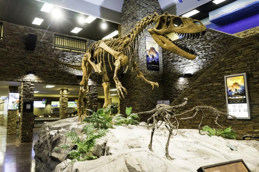 Dinosaur Museum - Utah Valley