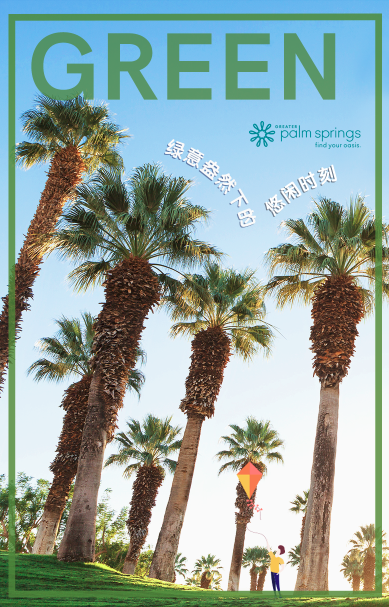 Palm Tree photo for Weibo post