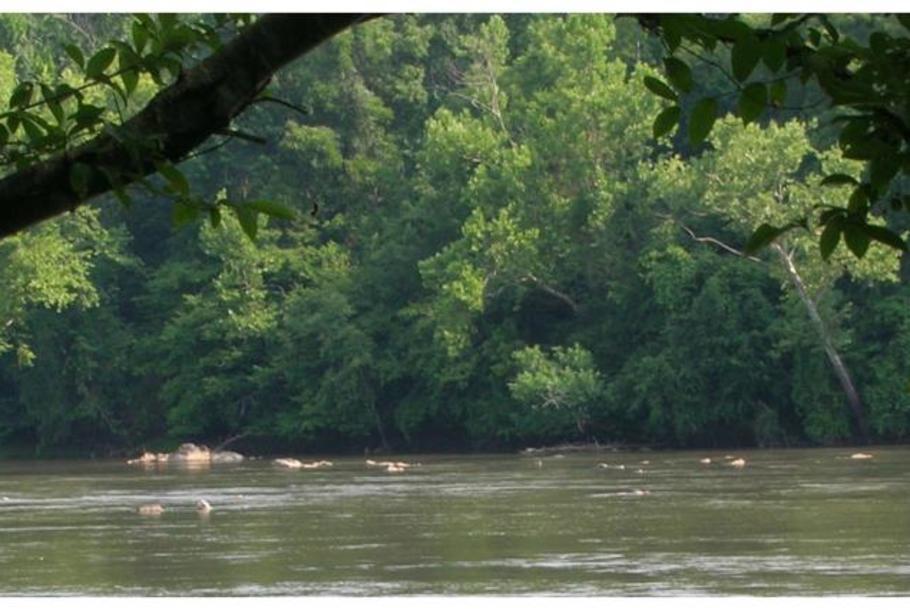 riverpark.jpg