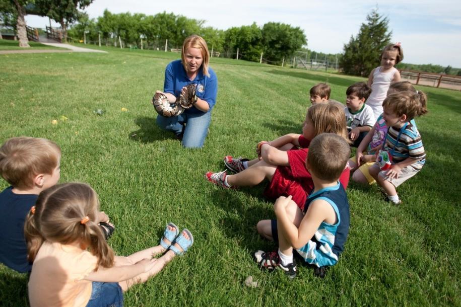 kids looking at snake at the amarillo zoo