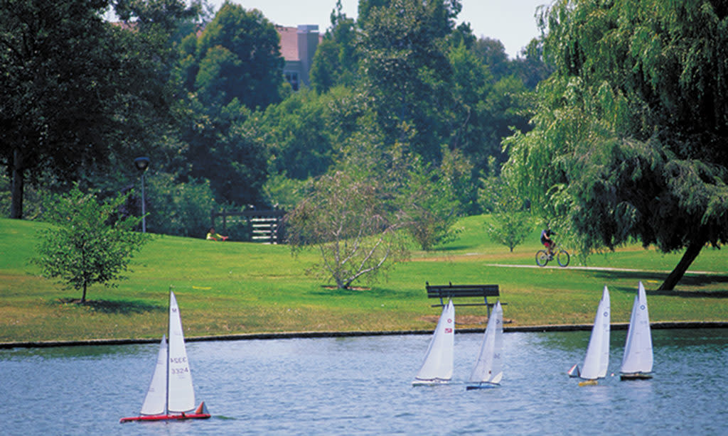 Model Sail Boats at Mason Regional Park