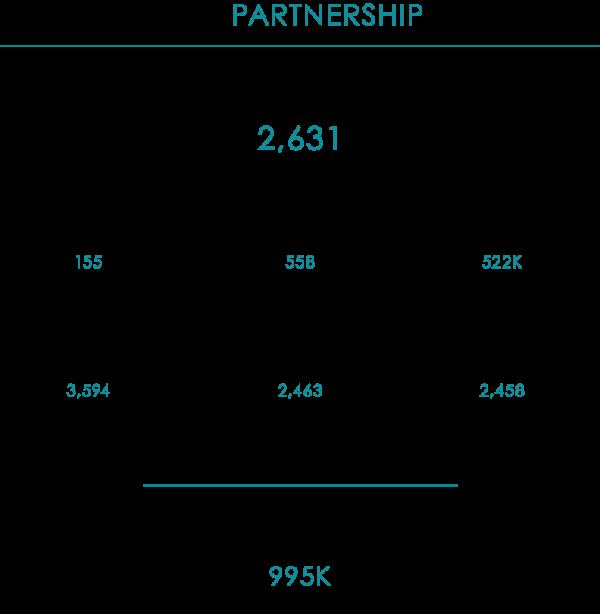 AR_2019 Partnership Stats