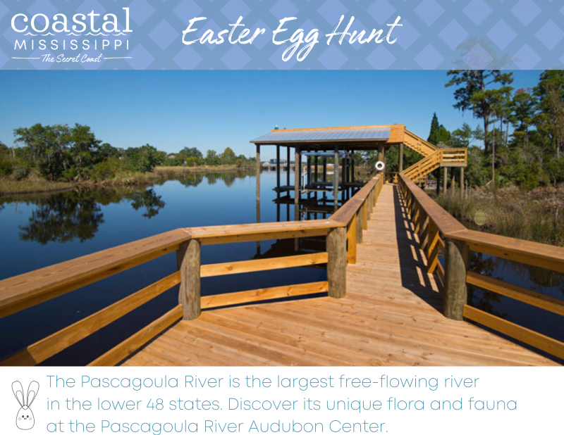 Easter Egg Hunt - Pascagoula River Audubon Center