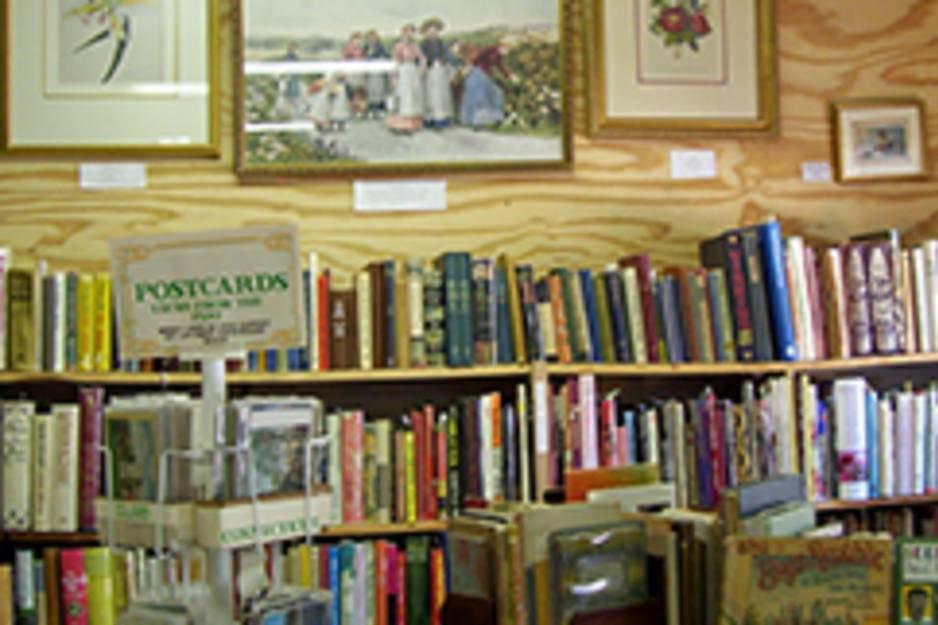 allison goodsell books.jpg