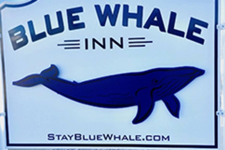 blue-whale-inn-misquamicut-beach-rhode-island-staybluewhale.jpg