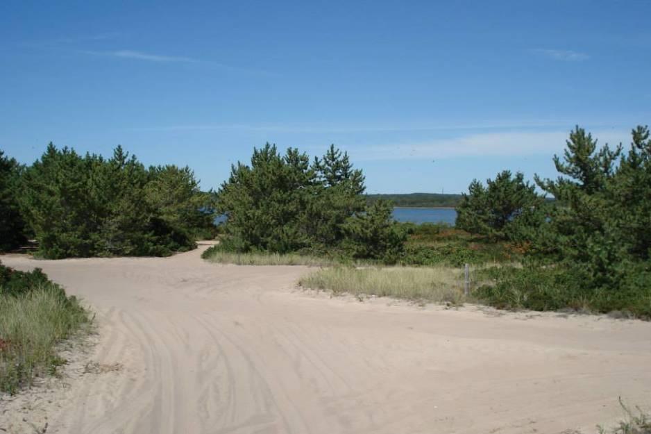 East Beach State Beach 1