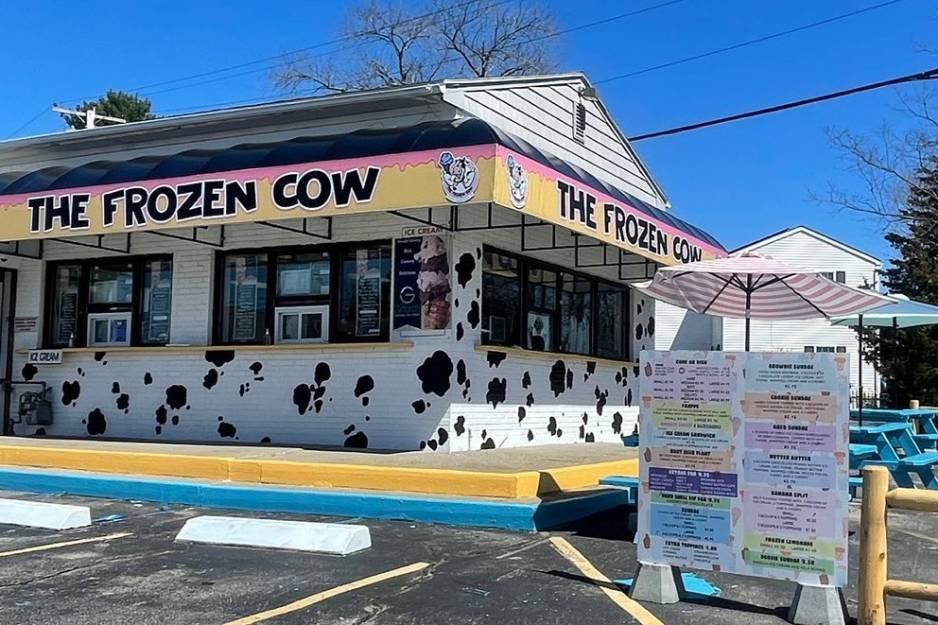 frozen cow