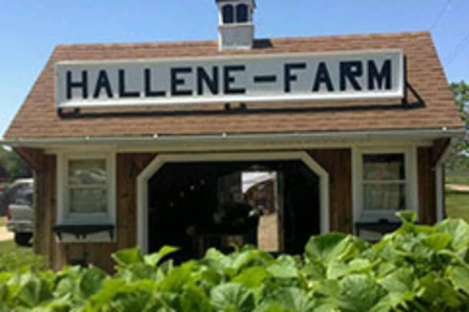 hallene farm.jpg