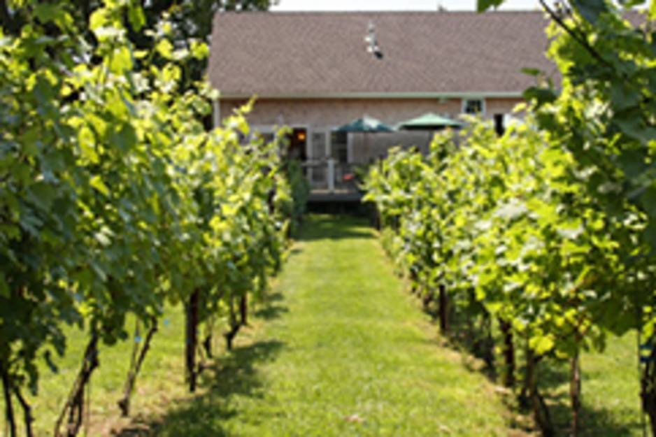 langworthy winery.jpg