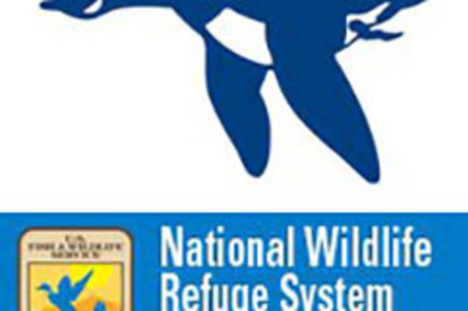 natioanl wildlife refuge-2.jpg