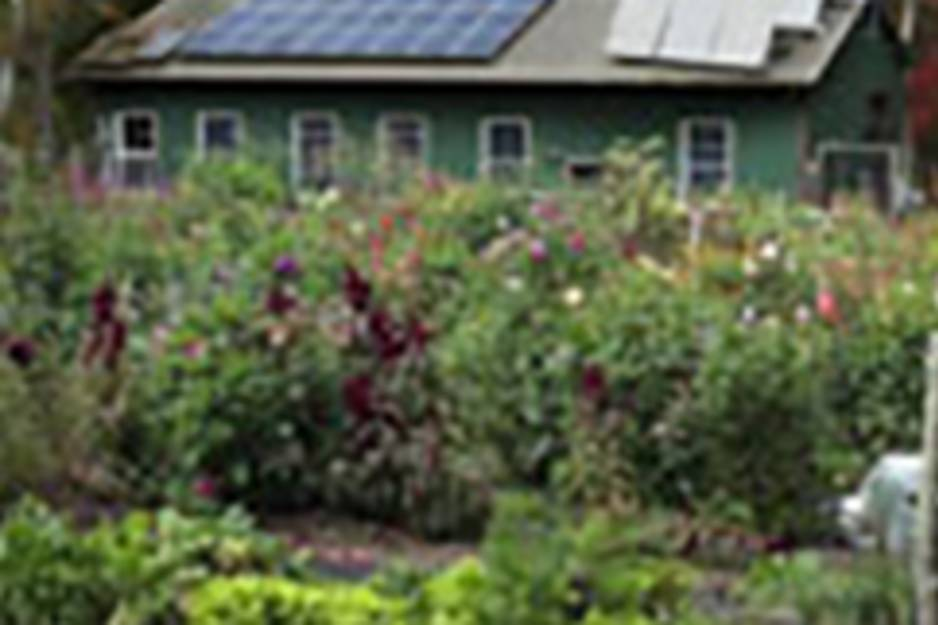 shannock organic farm.jpg