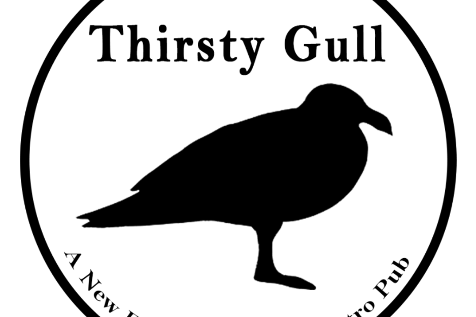 thirsty gull
