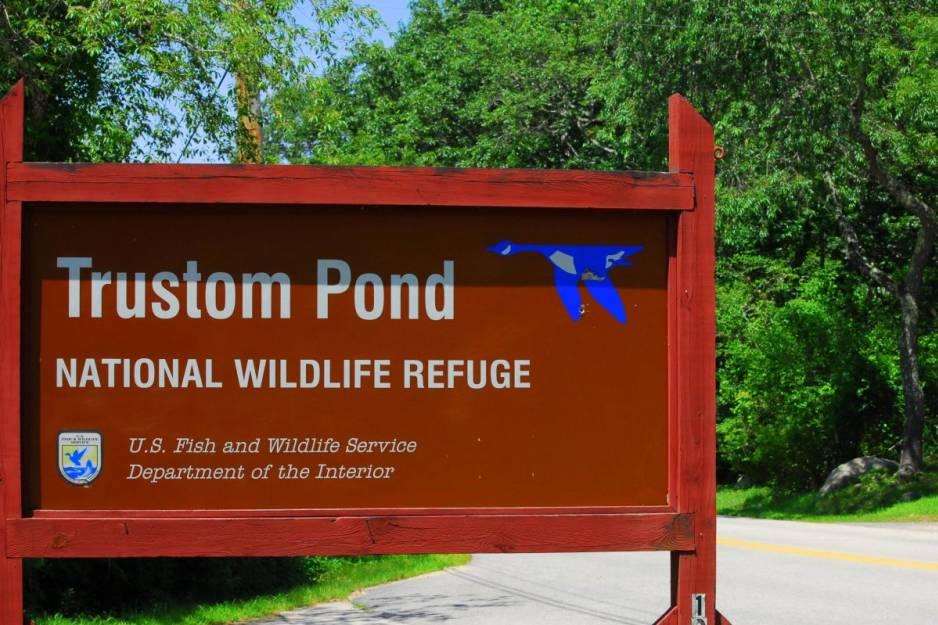 trustom pond 1