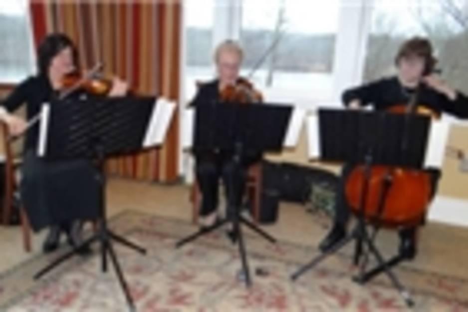 Westminster-Strings--300x187.jpg