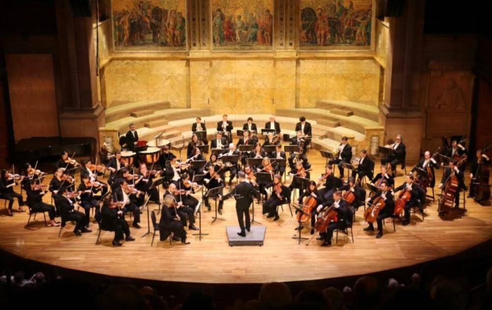 Princeton Symphony Orchestra Performance