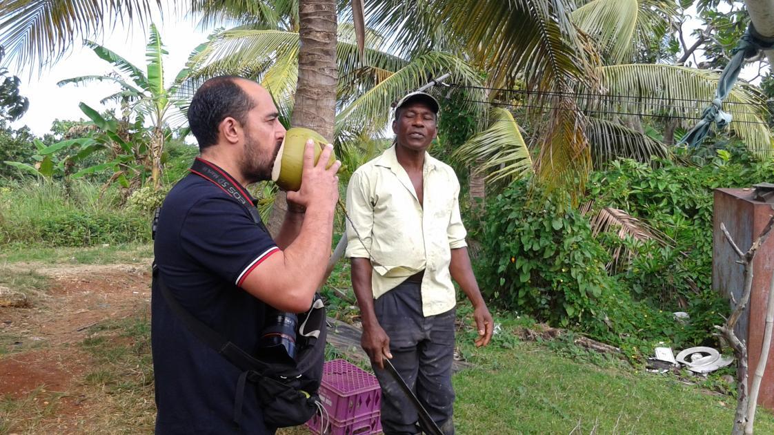 Paradise Travels in Jamaica