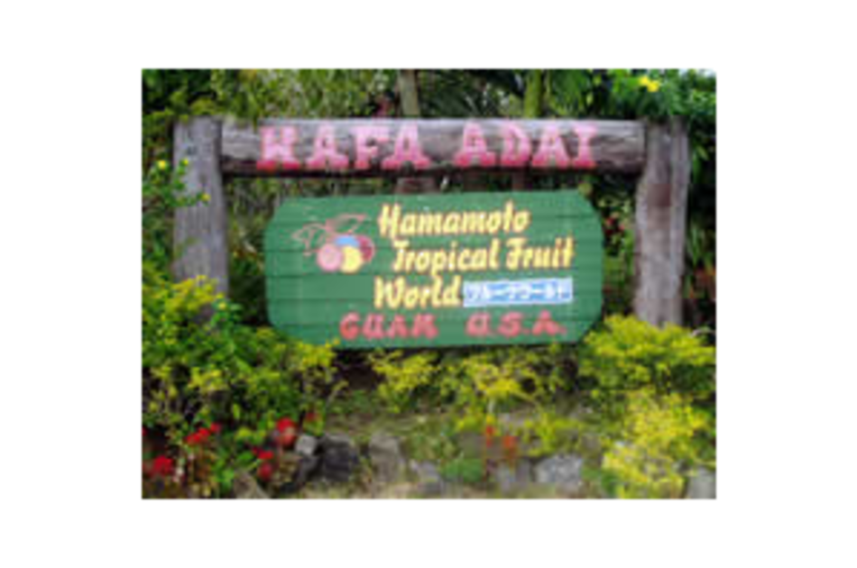 Hamamoto Tropical Fruit World Image 01