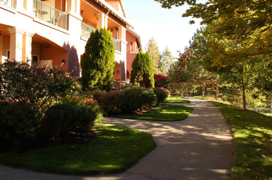 Borgata Lodge Grounds
