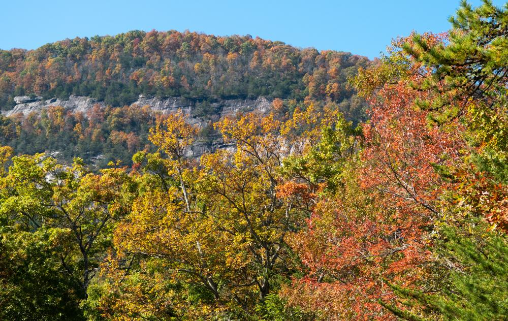 Fall color as seen from the entrance gate at Chimney Rock State Park