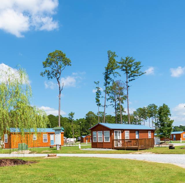 Raleigh Oaks cabins