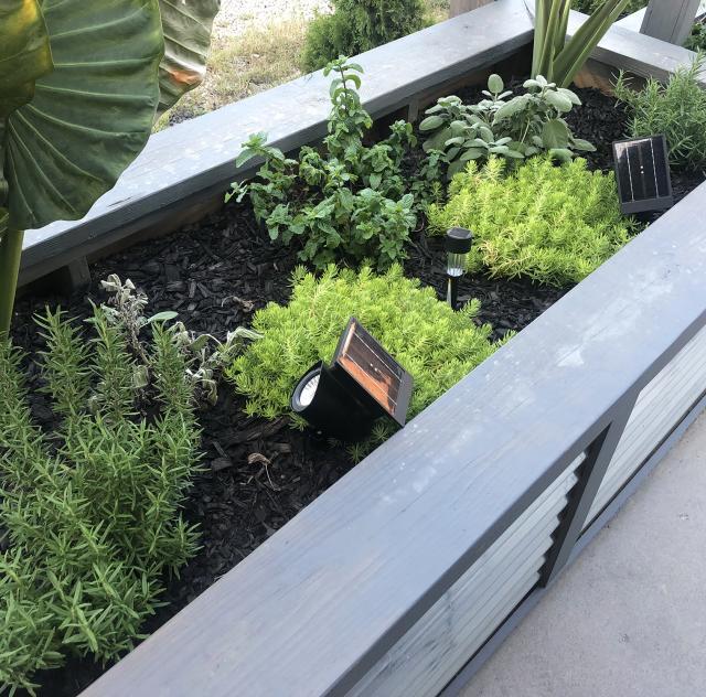 Revival 1869 Patio Herb Garden 2000x1500 72dpi