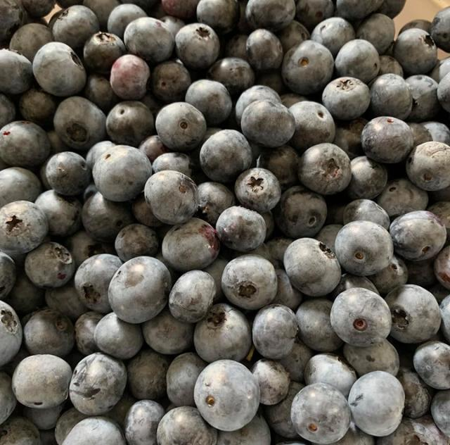 Ronnies blueberries