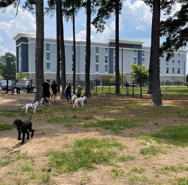 benson dog park 2 2000x1500 72dpi (2)