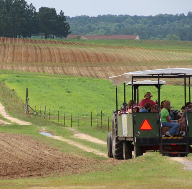 Lazy O Farm Wagon Ride