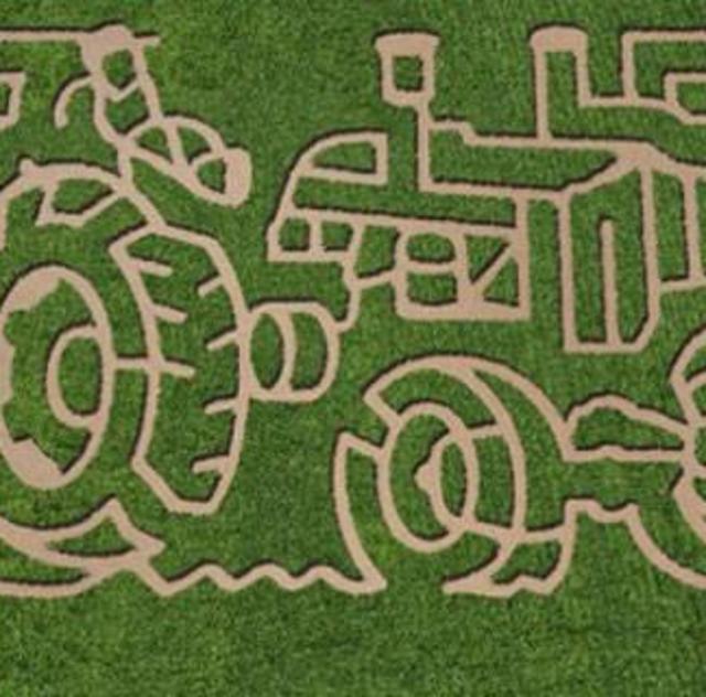 2015 Corn Maze at Boyette Farms