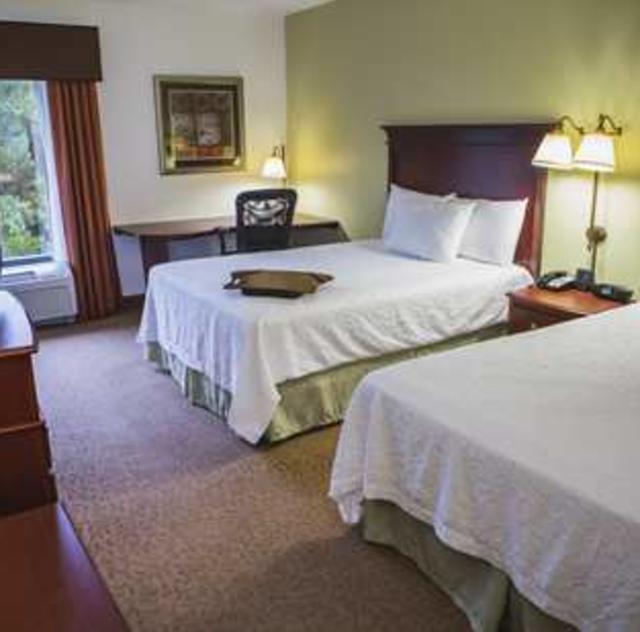 Hampton Inn Selma Double Room