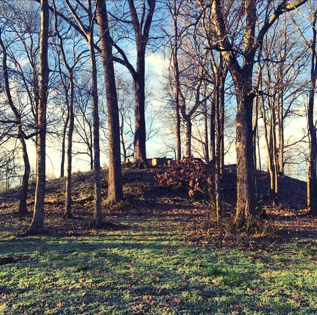 oakville indian mound