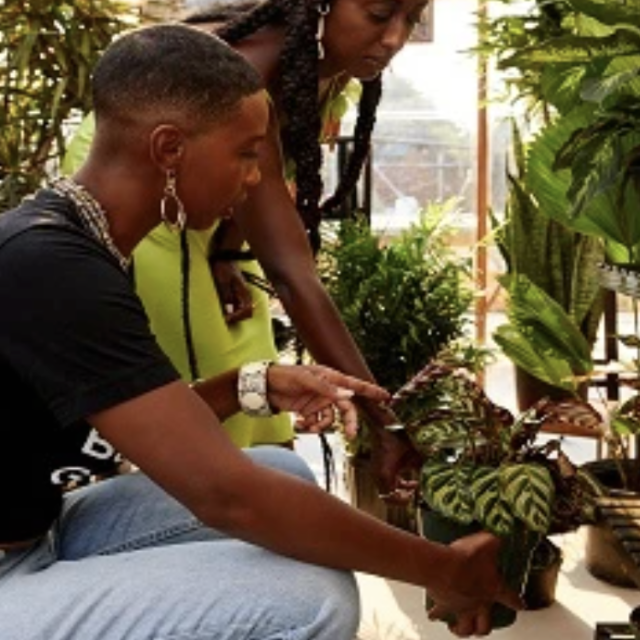 Black Girls Greenhouse