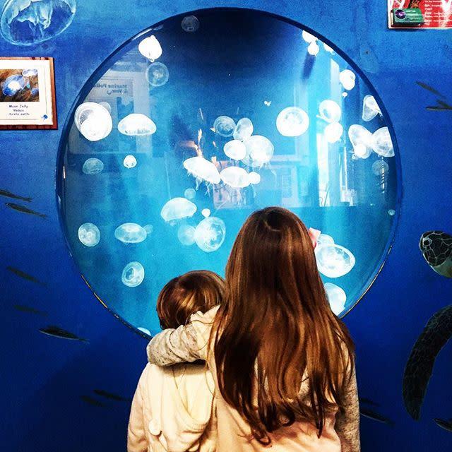 SM Pier Aquarium