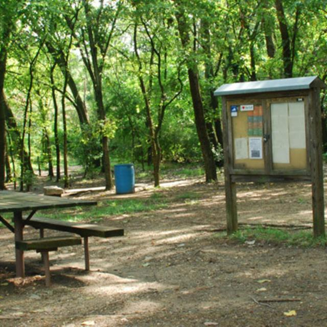 Gillies Creek Park