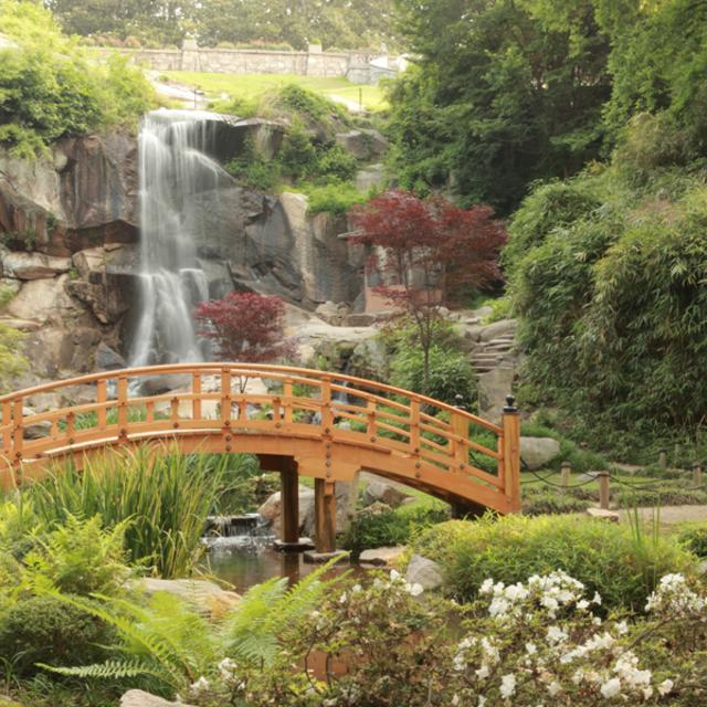 Maymont Japanese Garden Bridge and Waterfall