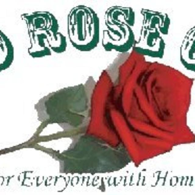 NEW Wild Rose