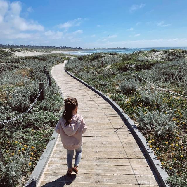 Asilomar Scenic Path