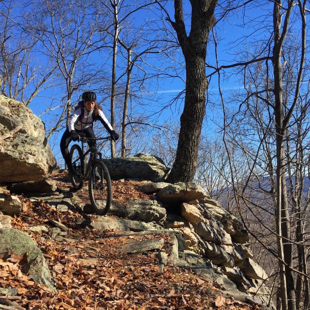 North Mountain Roanoke - Biking
