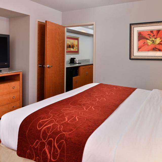 Single King Suite Bedroom