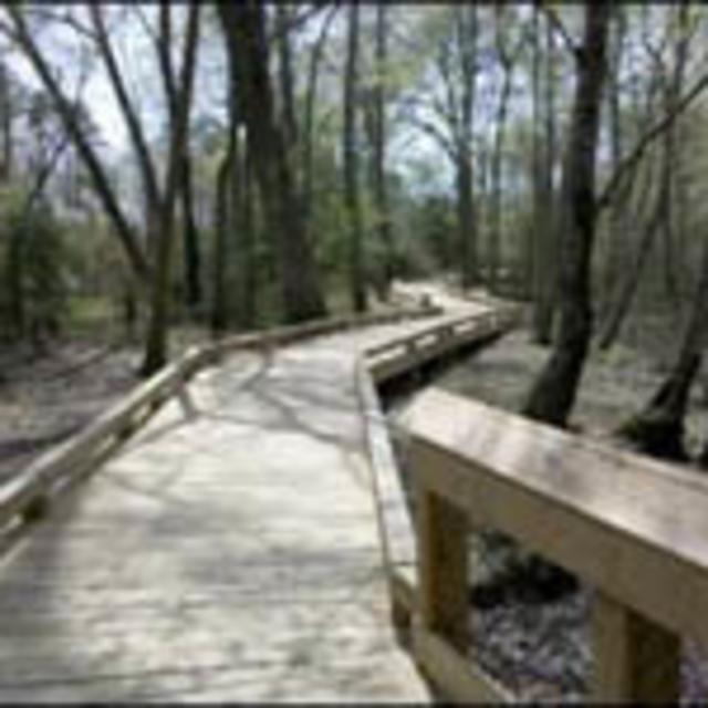 Appomattox River Canoe Launch walkway