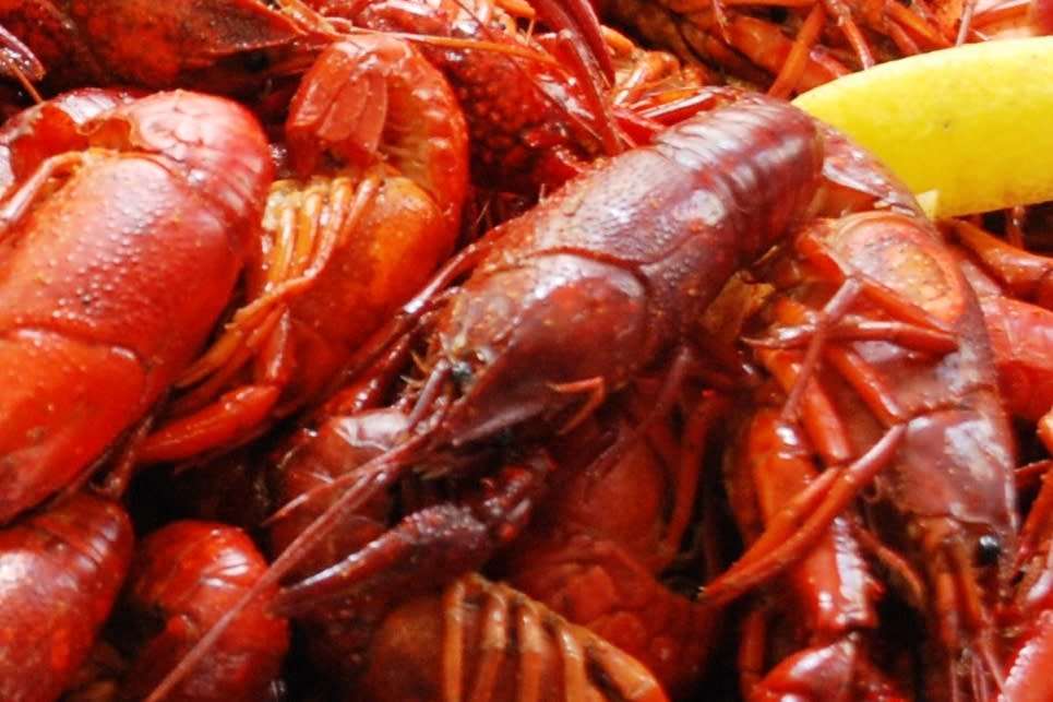 Slidell's Annual Crawfish Cook-off