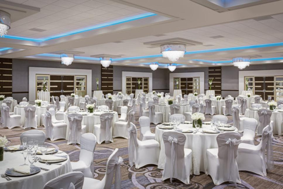 Sheraton Brookhollow Wedding