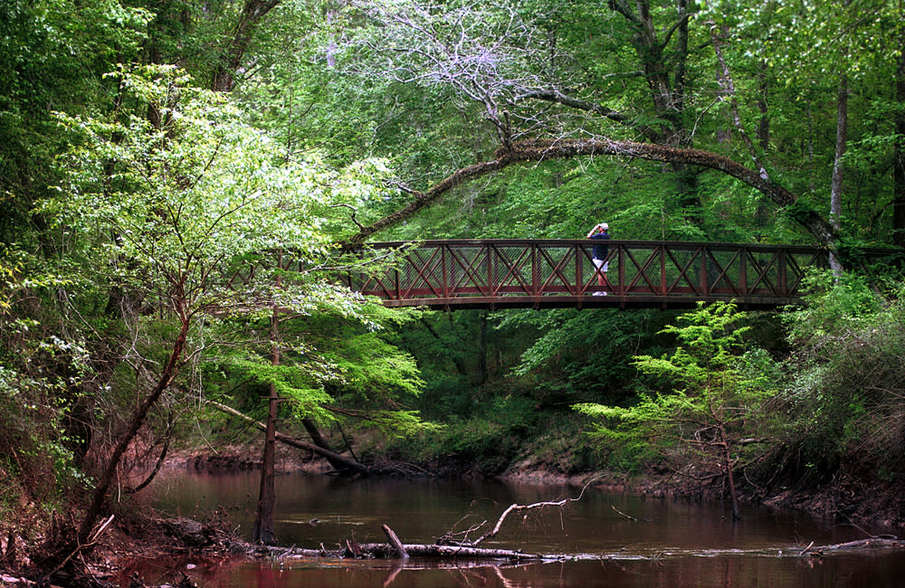 Big Thicket Bridge