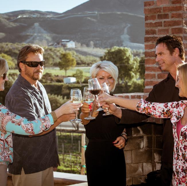 Group Drinking Wine
