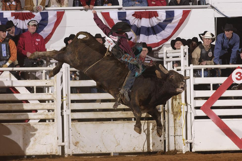 Southwestern Exposition Livestock Show And Rodeo Fort