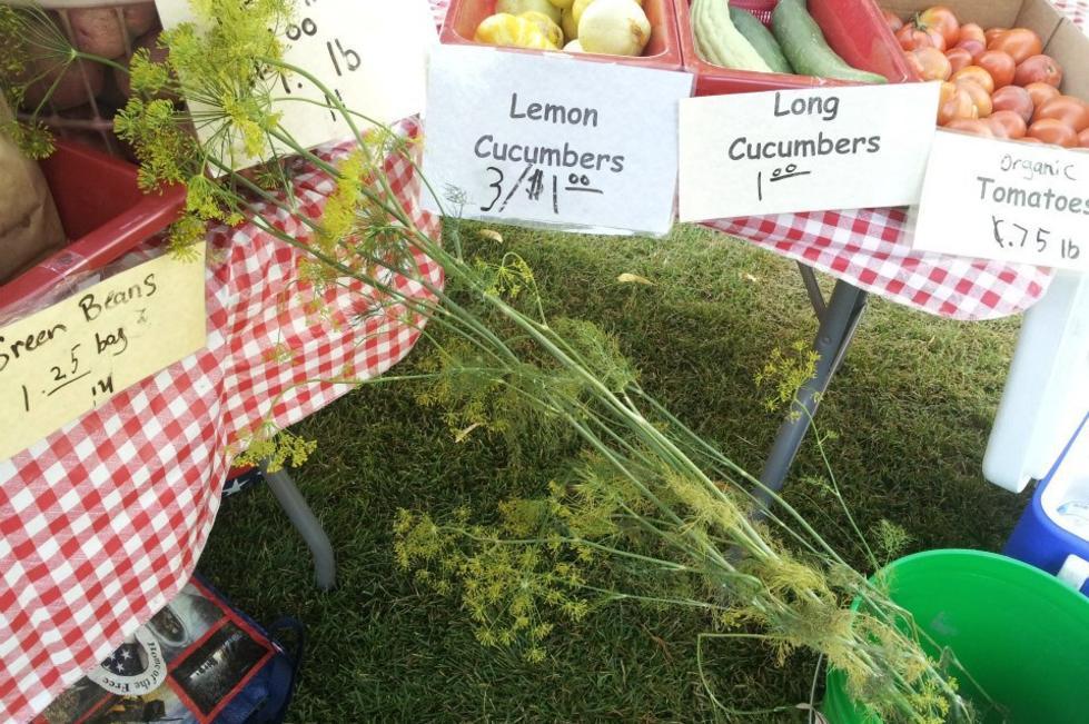 Spanish Fork Farmers Market 3