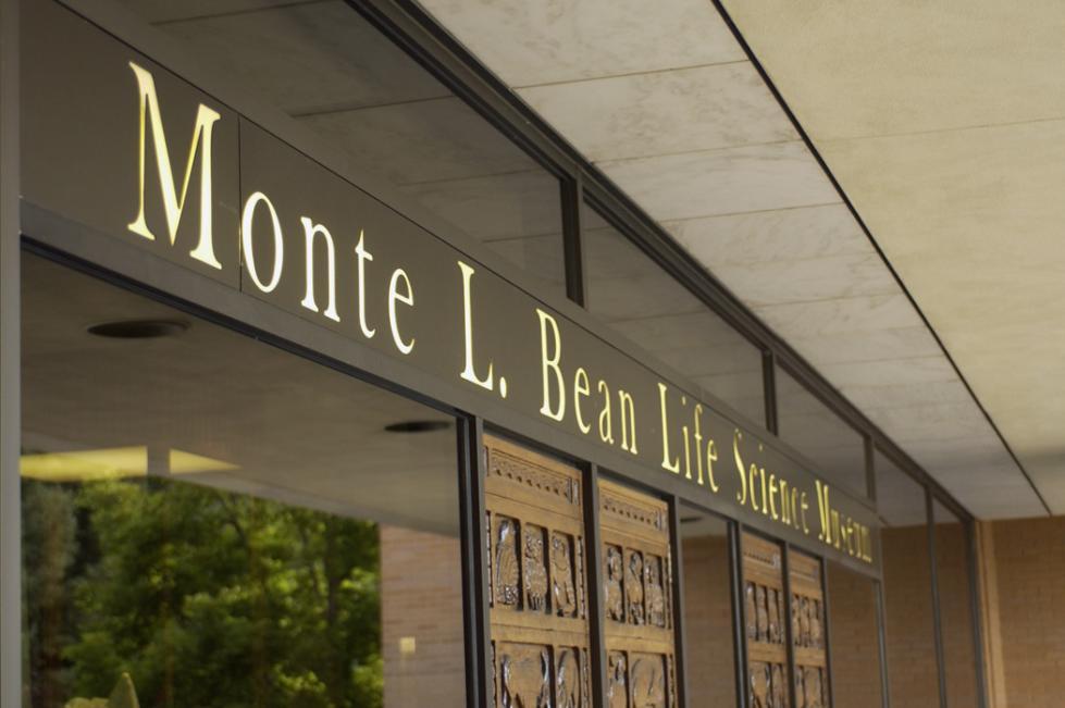 Bean Museum