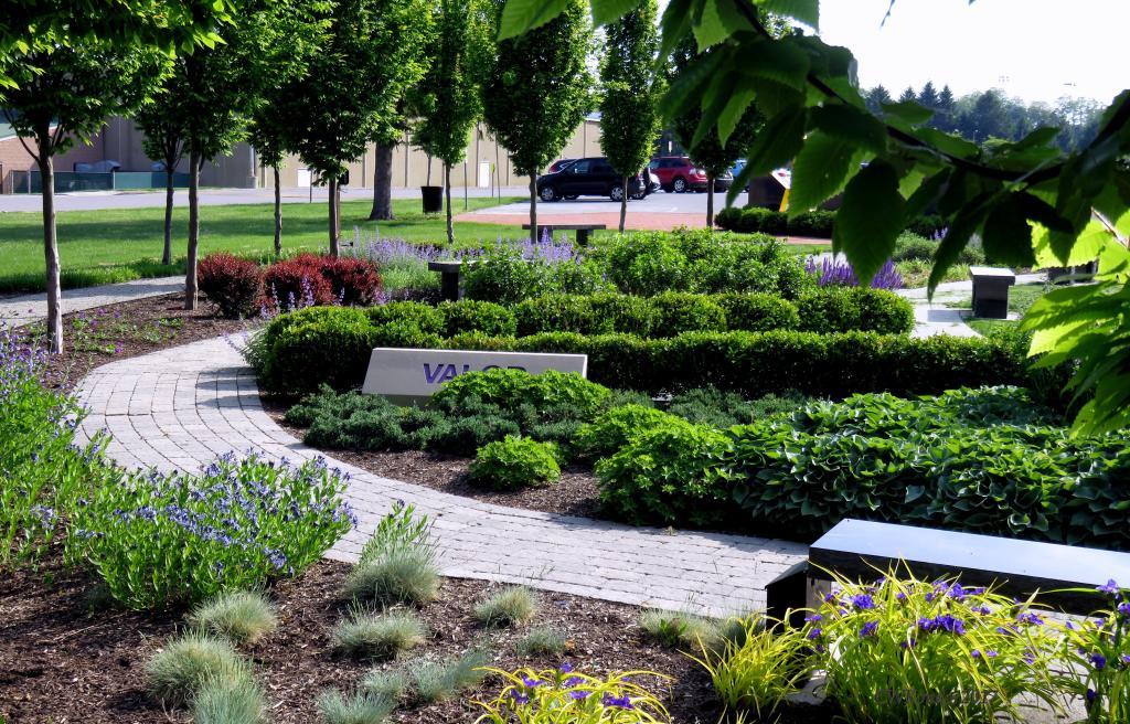 Veterans Memorial Gold Star Garden