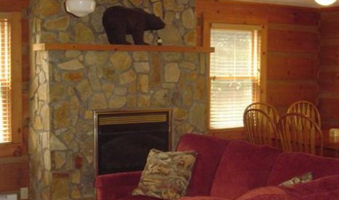 A Bears Den